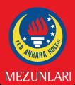 TED Ankara Koleji Mezunları Derneği